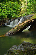 Beautiful swimming hole on the Pargo river, Corcovado National Park, Costa Rica's largest national park.