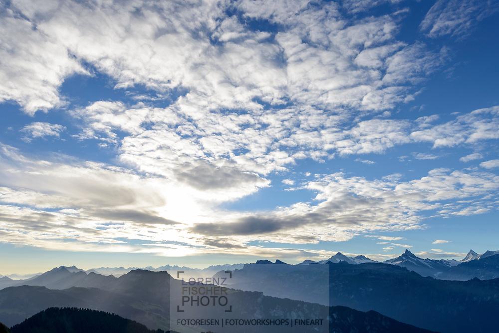 Impressionen am Güggisgrat zwischen Niederhorn (1934) und Gemmenalphorn (2061) oberhalb Interlaken an einem späten Sommertag Ende August.