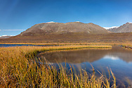 Kettle pond and Amphitheater Mountains along Denali Highway in Southcentral Alaska. Autumn. Afternoon.
