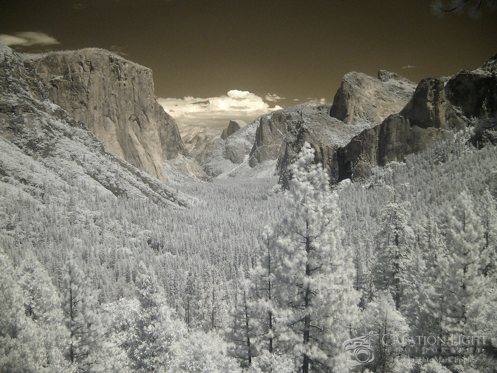 Yosemite Valley is known around the world for its beauty.  El Capitan can be seen on the left and Half Dome on the right in the distance. The valley Is located on the western slope of the Sierra Nevada mountains and stretches for 7 miles (11 km). More than half a dozen creeks create waterfalls into the valley falling from 3000-4000 feet (900-1200 m) above the valley floor, which is 4000 ft (1200 m) above sea level. The streams combine into the Merced River, which flows into the San Joaquin Valley. The valley floor holds both forest and large open meadows. ..This is an infrared image which captures light that we cannot see and turns it into a visible image. Plants like flowers and grass reflect more infrared light and appear brighter in infrared images while the sky reflects less making it darker.