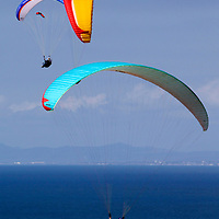 USA, California, San Diego. Torrey Pines Paraglider Party.