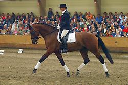 623-Amstelland's Tadassa<br /> KWPN Paardendagen Ermelo 2004<br /> Photo © Hippo Foto