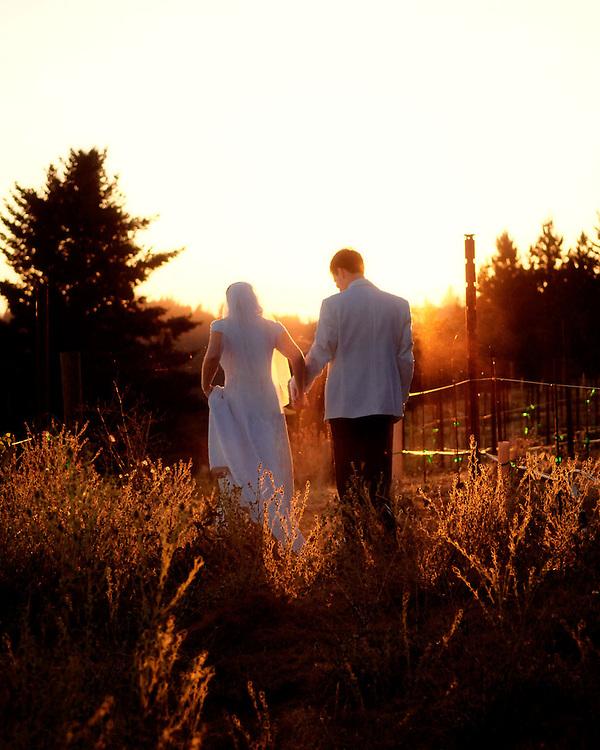 Wedding of Jamie Elisa and Bryan Cook September 3, 2005. Redwood Ridge Estate, Summit Road, Los Gatos.