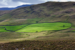 Green, stone-walled field in Sheeffrey Hills, County Mayo, Ireland