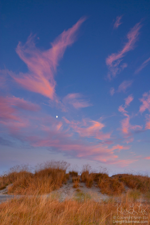 Cirrus clouds, turned red by the setting sun, frame the crescent moon as it shines over sand dunes in Discovery Park, Seattle, Washington. Discovery Park is Seattle's largest remaining green space and the sand is sediment dropped by glaciers during the last ice age.