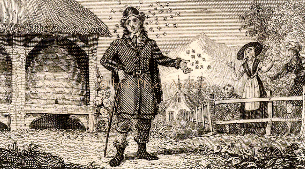 Jan Swammerdam (1637-1680) Dutch naturalist.  Swammerdam being followed by a swarm of bees because he had taken their queen. Engraving from 'Scenes of Industry' by Isaac Taylor (London, 1830).