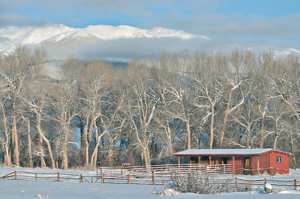 Buena Vista Colorado.  Photo by William Byrne Drumm.