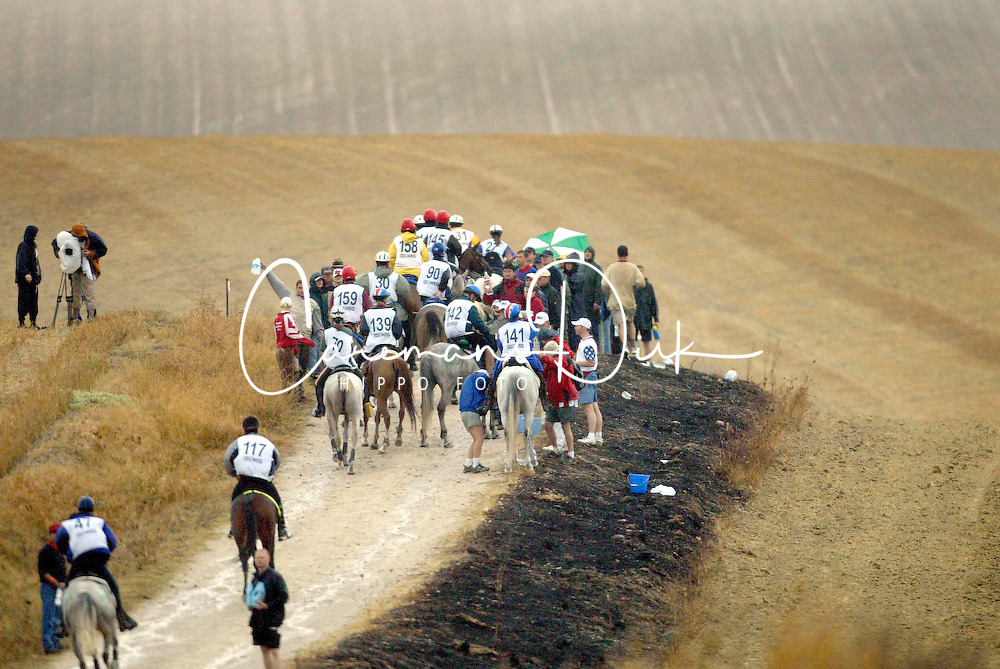 Endurance<br /> World Equestrian Games Jerez de la Fronteira 2002<br /> Photo © Dirk Caremans