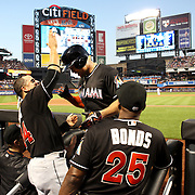 NEW YORK, NEW YORK - July 05: Giancarlo Stanton #27 of the Miami Marlins is congratulated by Martin Prado #14 of the Miami Marlins on his return to the dugout after hitting a two run home run in the seventh inning during the Miami Marlins Vs New York Mets regular season MLB game at Citi Field on July 05, 2016 in New York City. (Photo by Tim Clayton/Corbis via Getty Images)