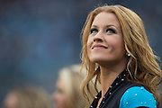 December 11, 2016: Carolina Panthers vs San Diego Chargers. Panthers' cheerleader
