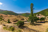 Poplar tree in Ardvi area  landscape landmark of Lorri Armenia eastern Europe