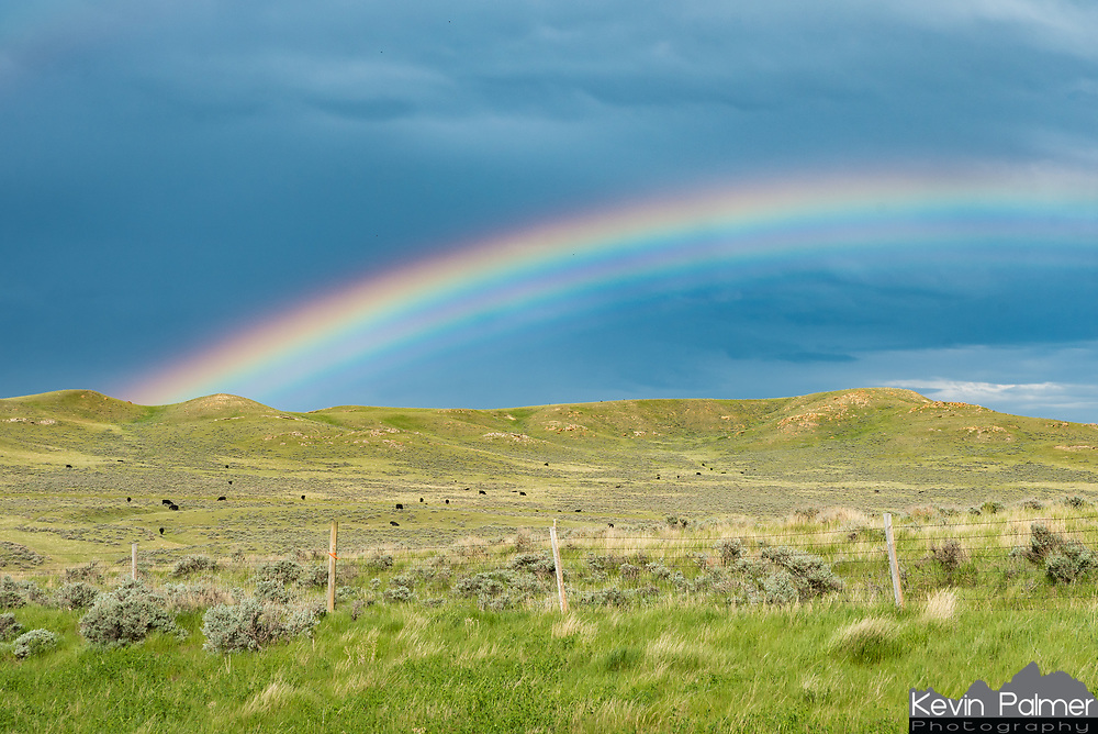 Even though I was disappointed with how quickly this storm fell apart, it went out with an interesting rainbow. The extra colors at the bottom are called supernumeraries, and they only form when water droplets are nearly all the same size. This was only the second time I've seen a supernumerary rainbow.