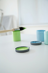 Blue paint and green paint testers with paint brush