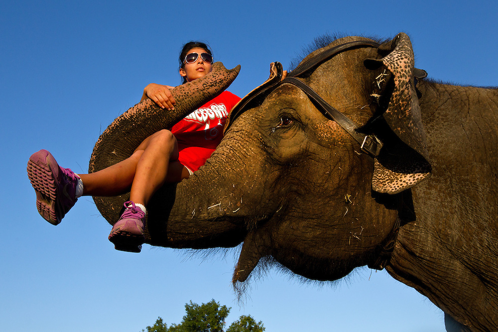 Tina Morris is carried by Cindy, a 38-year-old Asian elephant during an elephant encounters show Friday evening in the East Entertainment Area at the Nebraska State Fair in Grand Island. (Independent/Matt Dixon)