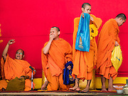 21 JANUARY 2017 - BANGKOK, THAILAND:  Buddhist monks leave a prayer service in Phra Khanong Market in Bangkok. The market serves a mix of foreign residents, local people, and Burmese migrants.      PHOTO BY JACK KURTZ