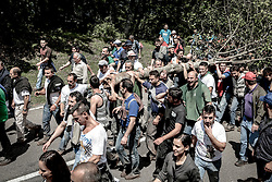 """Accettura (MT) 27.05.2012 - Maggio di Accettura 2012. La domenica di Pentecoste ha inizio, nel bosco di Montepiano, la celebrazione della festa del Maggio che, tra le rappresentazioni dei """"culti arborei"""" sopravvissute, costituisce l'esempio più fedele all'antica tradizione...Un cerro di grandi dimensioni denominato il """"maggio"""", tagliato il giovedi dell'ascensione, privato dei rami e scortecciato, viene trascinato in paese da diverse coppie di buoi. Contemporaneamente nel bosco di Gallipoli la squadra dei """"cimaioli"""" preleva la """"cima"""", un agrifoglio che viene trasportato in paese a spalla...Il trasporto del """"maggio"""" e della """"cima"""" rappresenta un momento di grande teatralità e dura l'intera giornata, tra grida di incitamento, esibizioni di forza fisica, accompagnamento musicale e frequenti soste per mangiare qualche """"boccone"""" e bere vino a garganella...Due giorni dopo, il martedi di Pentecoste, la """"cima"""" viene innestata sul """"maggio"""", a simboleggiare il matrimonio degli alberi, rito propiziatorio di fertilità e di buoni raccolti. A questo punto il """"maggio"""" è pronto per essere innalzato in piazza; l'azione, diretta dagli anziani più esperti, è svolta a forza di braccia da diverse squadre di uomini con l'ausilio di grosse funi e argani e richiede, oltre che forza fisica, anche perizioa tecnica...A conclusione della festa, squadre di cacciatori gareggiano nel tiro al bersaglio per far cadere le targhette appese ai rami dell'agrifoglio che daranno diritto al ritiro dei premi in natura...Infine, i più abili ed agili si cimenteranno nella scalata del """"maggio"""", conquistando in questo modo l'ammirazione di tutto il paese."""