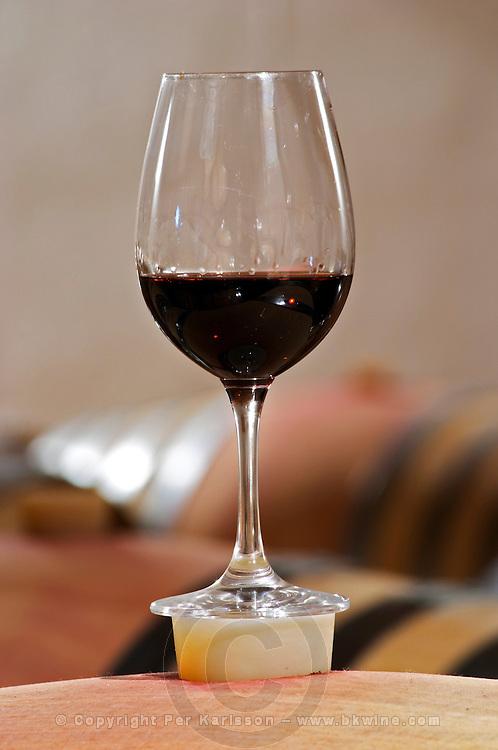 Bung hole with stopper. And glass. Oak barrel aging and fermentation cellar. Wine glasses. Quinta do Carmo, Estremoz, Alentejo, Portugal