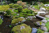 Kyu-Chikurin-in Garden is famous for its traditional tea-ceremony houses and arbor all of which has been designated as a cultural asset of Otsu City.  The garden is composed of a river stream, stones, trees and moss which collectively reperesents nature.  The buildings and garden were once a Satobo - monks retirement villa -  many temple compounds in Sakamoto are of these satobo but most are not open to the public. Chikarin-in was once a temple but became a venue for tea ceremony, and even today has two rare teahouses that have been the venue for famous tea ceremony events in history. The teahouses can be seen in the strolling garden