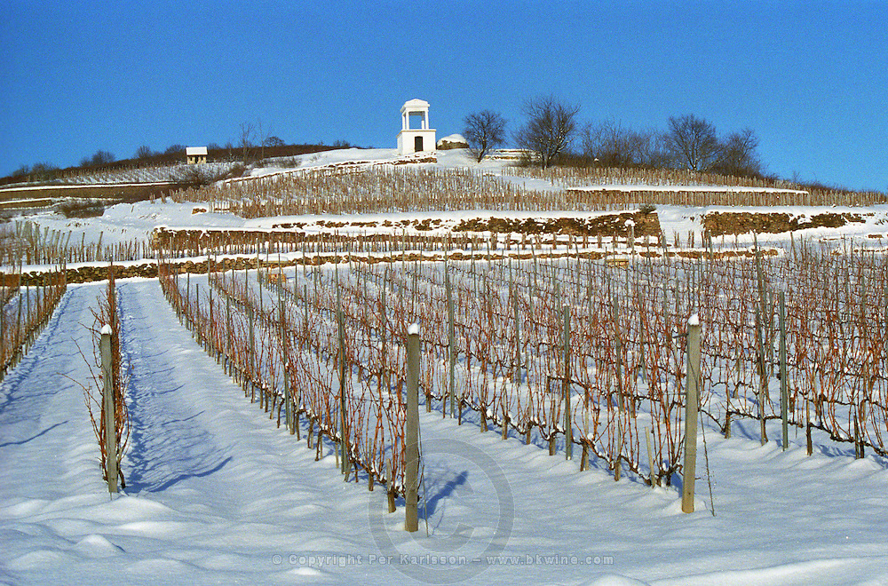 The Disznoko vineyard with a watch tower under snow in winter. The Disznoko winery is owned by AXA Millesimes, a French insurance company. Disznoko means pig's head since a big rock in the vineyard supposedly looks like that. The new winery is impressive and a vast amount of money has been invested. Credit Per Karlsson BKWine.com