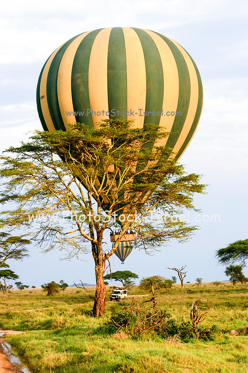 Hot air balloon safari. Photographed in Serengrti park, Tanzania