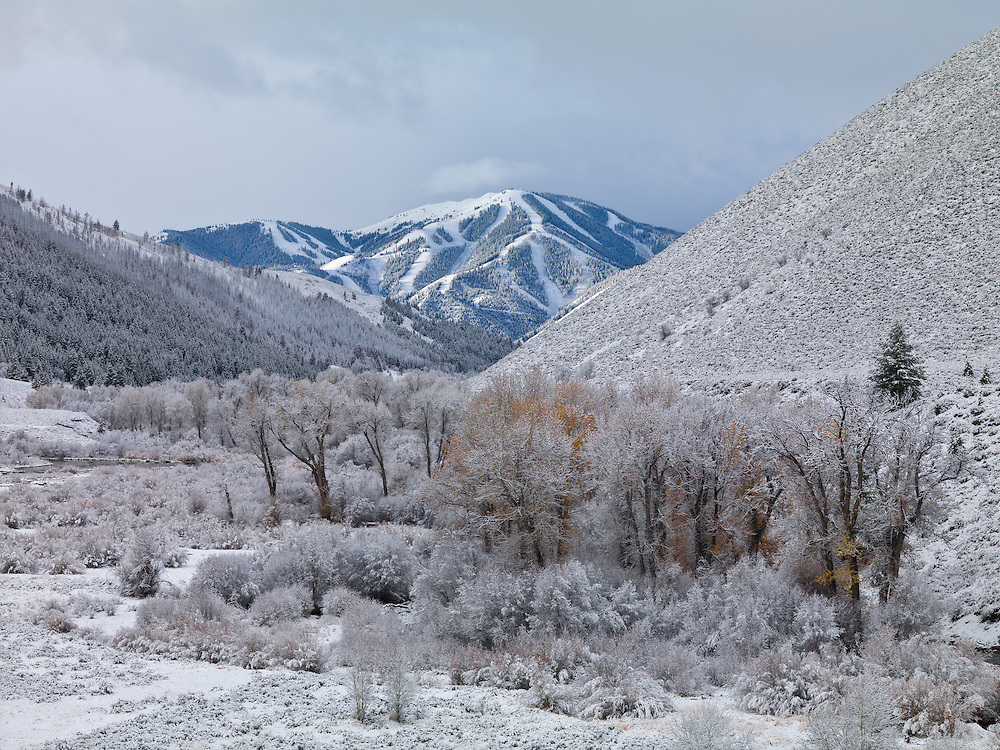 Open Edition Fine Art Photograph Early winter moves in on Sun Valleys Baldy Mountain with the cottonwood trees and willows of Trail Creek Canyon still holding onto their last colors of Autumn in Central Idaho