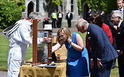 The Prince of Wales is shown a bee keeping demonstration by Fiona Edwards-Murphy during a visit to University College Cork as part of his tour of the Republic of Ireland.