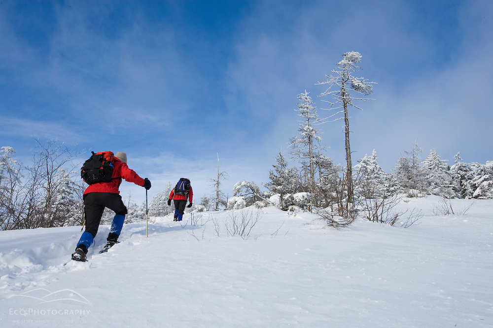 Winter hiking on Mount Cardigan in New Hampshire.  Clark Trail. Canaan, NH.