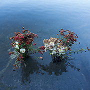 Many volcanoes are considered to be sacred in Guatemala, particularly within the Mayan culture. Here, flowers are left as offerings at Chicabal Volcano, an extinct volcano.