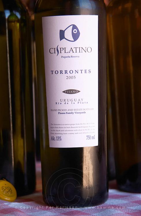 A bottle of Cisplatino Pequena Reserva Torrontes 2005 Rio de la Plata Bodega Pisano Winery, Progreso, Uruguay, South America