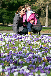 © Licensed to London News Pictures. 11/03/2015. Kew, UK. A young woman and girl (NAME NOT GIVEN) enjoy looking at the display. People enjoy the crocus displays at Kew Garden's today 11th March 2015. The display features the variety Crocus tommasinianus. The Uk has enjoyed warm sunny weather this week.  Photo credit : Stephen Simpson/LNP