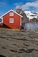 Traditional red Rorbu fishermans cabin overlooks fjord and mountains of lofoten islands, Sakrisoy, Lofoten islands, Norway