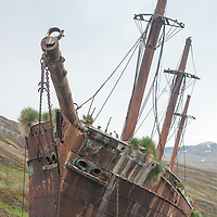 The rusting Bayard, a steel-hulled coal-carrying ship, rests on rocks where it foundered in Ocean Harbor, South Georgia, Antarctica.
