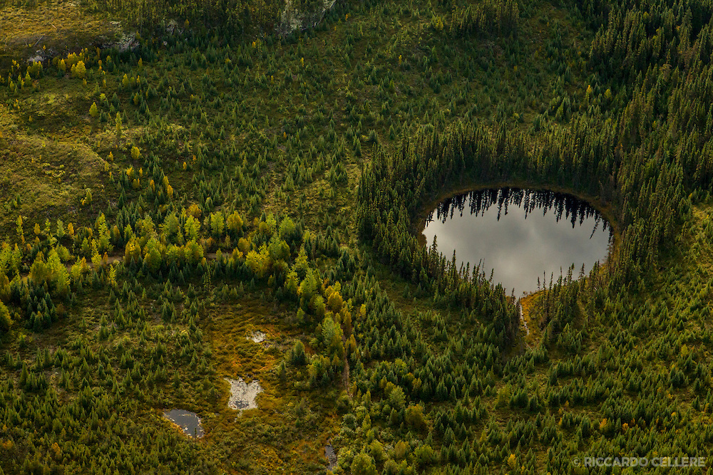 Corporate photography. Aerial shot of Canadian boreal forest. 2013.