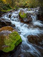 West Maroon Creek, Maroon Bells, aspen trees, autumn, Colorado