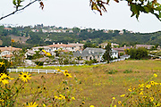 Residential Neighborhood In Rancho Santa Margarita Orange County California