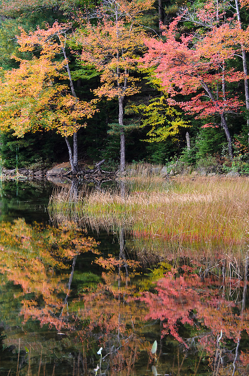 Red and orange autumn foliage reflected in the still waters of Eagle Lake, Acadia National Park, Maine.