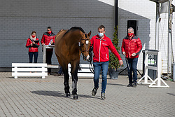145, Check In<br /> Hengstenkeuring BWP- Azelhof - Lier  2021<br /> <br /> © Hippo Foto - Dirk Caremans<br /> 12/04/2021