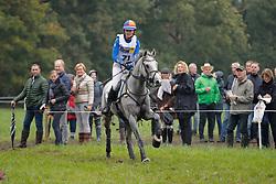 De Jong Sanne, NED, Enjoy<br /> CCI 3* Boekelo 2017<br /> © Dirk Caremans<br /> 07/10/2017