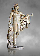 2nd century AD Roman statue of Apollo known as the Belvederre Apollo. The Apollo statue originally had a bow in its left hand and Apollo is depiceted having just fired an arrow.  Probably a Roman copy of a Hellenistic statue from around 330-320 BC by Leochares. Inv 1015, Vatican Museum Rome, Italy,  grey art background ..<br /> <br /> If you prefer to buy from our ALAMY STOCK LIBRARY page at https://www.alamy.com/portfolio/paul-williams-funkystock/greco-roman-sculptures.html . Type -    Vatican    - into LOWER SEARCH WITHIN GALLERY box - Refine search by adding a subject, place, background colour, museum etc.<br /> <br /> Visit our CLASSICAL WORLD HISTORIC SITES PHOTO COLLECTIONS for more photos to download or buy as wall art prints https://funkystock.photoshelter.com/gallery-collection/The-Romans-Art-Artefacts-Antiquities-Historic-Sites-Pictures-Images/C0000r2uLJJo9_s0c