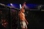MMA: German MMA Championship, GMC, Hamburg, 07.01.207<br /> Johannes Michalik (Key Gym Bremen) - Abdurashid Ataev (Gladiator Team Dresden)<br /> © Torsten Helmke