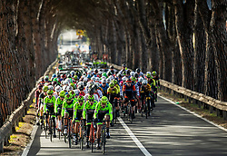 Peloton during the cycling race 6. VN Slovenske Istre / 6th Slovenian Istra Grand Prix, on February 24, 2019 in Izola/ Isola, Slovenia. Photo by Vid Ponikvar / Sportida