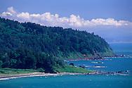 Rugged North Coast forest and hills at False Klamath Cove, Del Norte County, California
