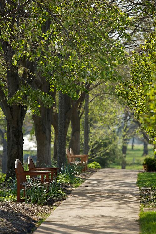 Park benches in Shaw Park in Clayton, Missouri