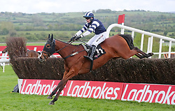 Snugsborough Hall ridden by Denis O'Regan jumps the last to win The Pigsback.com Handicap Steeplechase during day three of the Punchestown Festival at Punchestown Racecourse, County Kildare, Ireland.