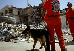 A Turkish search and rescue team uses dogs to comb the site of the explosion at the Canal Hotel for bodies in Baghdad, Iraq on Aug. 21, 2003. Earlier in the week a cement truck packed with explosives detonated outside the offices of the UN headquarters in Baghdad, Iraq, killing 20 people and devastating the facility in an unprecedented suicide attack against the world body. At least 100 people were wounded.
