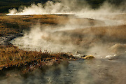The steaming runoff from the Terrace Springs zigzags across a meadow in Yellowstone National Park, Wyoming.