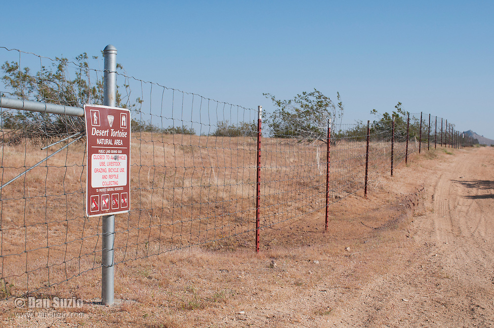 A sign at the boundary of the Desert Tortoise Natural Area, in the Mojave Desert, warns against taking or harming desert tortoises, Gopherus agassizi, a state- and federally-listed Threatened Species.