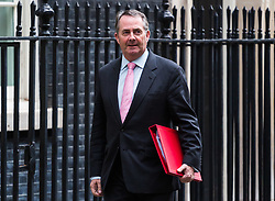 London, November 22 2017. Secretary of State for International Trade Liam Fox leaves the UK cabinet meeting on budget day at Downing Street. © Paul Davey