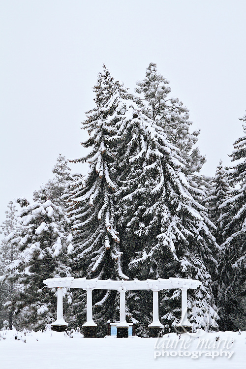 A fir tree heavily laden with snow leans on its neighbor in a snow covered park and garden