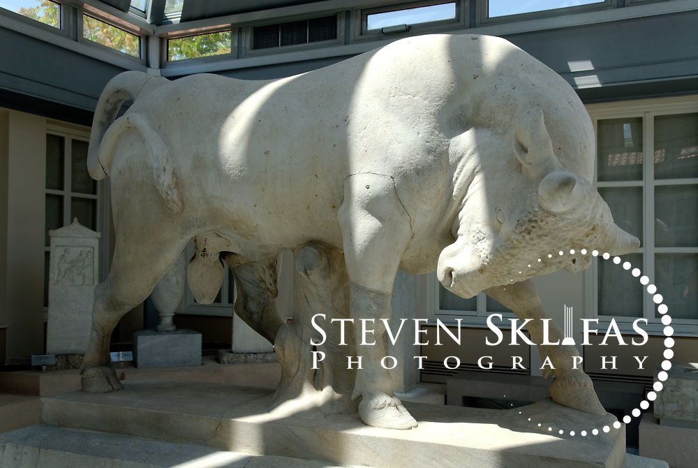 Original 4th century marble bull of the tomb of Dionysios of Kollystos in the Kerameikos museum atrium. Athens. Greece. The impressive marble bull was removed and replaced with a copy from its location on the street of the tombs for preservation. Serving as a burial ground as long ago as the 12th century BC, Kerameikos located in the ancient neighbourhood of potters contains part of the ancient city walls and the Dipylon, the main gate of Ancient Athens at a junction of the Sacred Way and Panathenaic Way. It served as a burial ground for the richest and most distinguished citizens of the city.